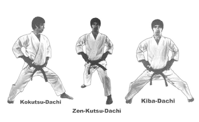 Karate basic kihon stances